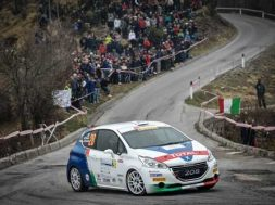 peugeot-competition-208-top-1
