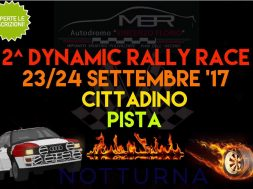 2_dinamic_rally_race